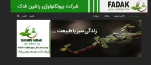 rashinfadak portfolio - مشاوره بازاریابی|تبلیغات|فروش - طراحی سایت و سئو 1